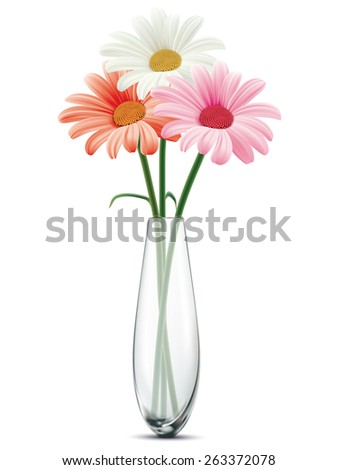 Daisy in a glass vase on a white isolated background. Illustration