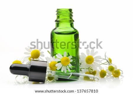 Daisy with bottle isolated on white background - stock photo