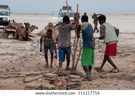 DALLOL, ETHIOPIA - NOV 25: Salt miners in Dallol, excavating salt in the hottest place on Earth, with average  34�°C year round on November 25, 2011 in Dallol, Ethiopia - stock photo