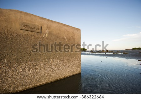 Dam texture with barnacle - stock photo