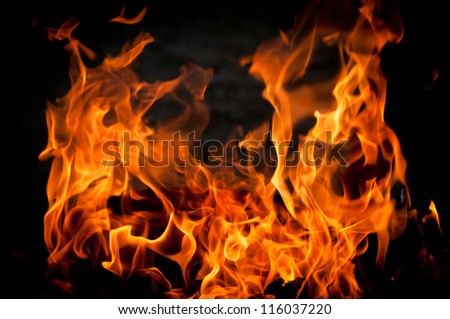 Dancing flames of a fire - stock photo