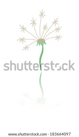 Dandelion flower illustration