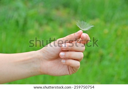Dandelion seed in hand against green nature background