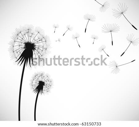 Dandelion Wind Blow Flower - stock photo