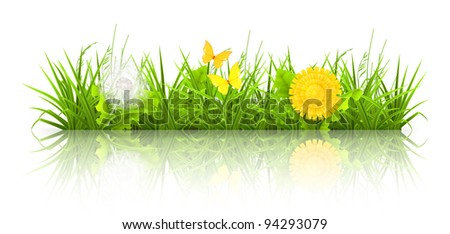 Dandelions and grass, bitmap copy - stock photo
