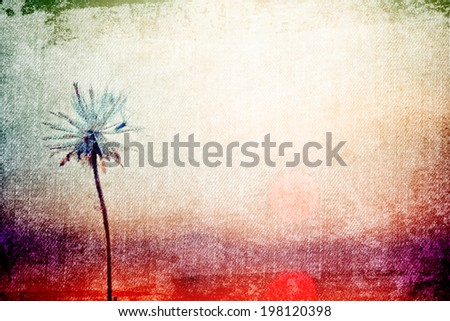 Dandelions flower in Vintage and pastel style for canvas background - stock photo