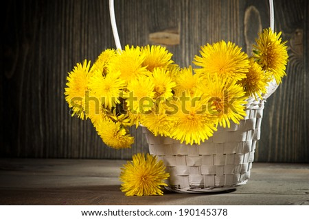 Dandelions in a basket on dark wooden background  - stock photo