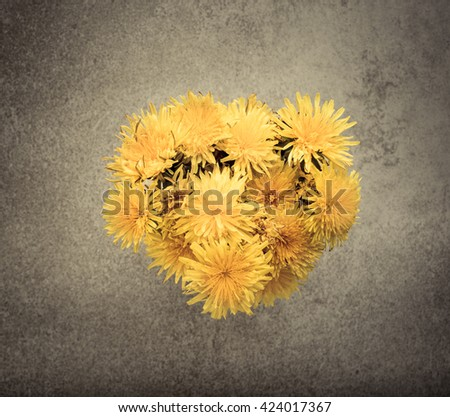 Dandelions in vase on table. Still life with colorful yellow summer flowers.