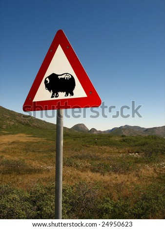 Danger sign with muskox, Greenland
