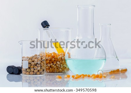 Dangerous food from  laboratory agricultural grains and corn with laboratory tools isolated on white background GMO food concept.