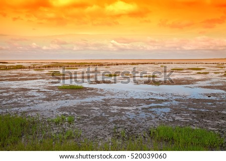 Danish wadden sea national park