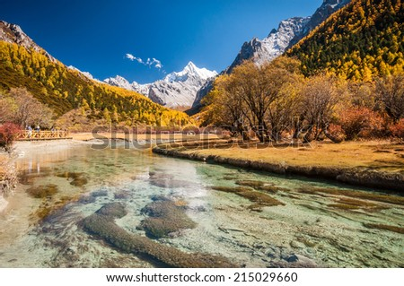 Daocheng, Sichuan , China - October 21,2008 : Chinese tourist visting autumn forest with mt. Chanadorje and Chongu pasture  in Yading national level reserve in Daocheng, Sichuan Province, China.