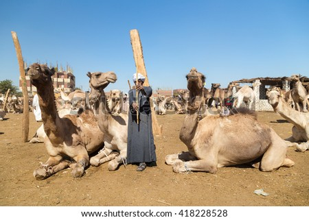 DARAW, EGYPT - FEBRUARY 6, 2016: Elderly camel salesmen with stick at Camel market. - stock photo