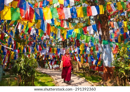 DARJEELING, INDIA - APRIL 14: A tibetan monk walks through a temple pathway surrounded by colorful tibetan prayer flags on April 14, 2014 in Darjeeling, West Bengal, India. - stock photo