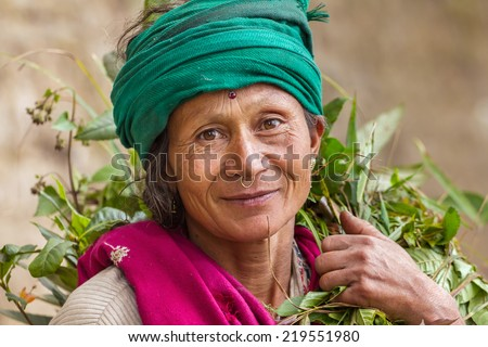 DARJEELING, INDIA - MARCH 17: Portrait of an  unidentified woman tea picker March 17, 2013 in Darjeeling, India. - stock photo