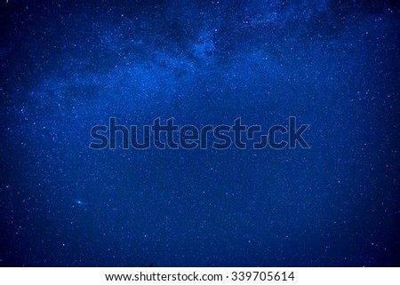 Dark blue night sky above the mystery forest with pine trees - stock photo