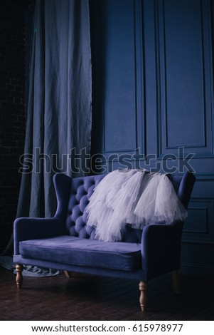 Blue Sofa. Dresses. Fine Art