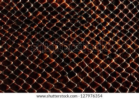 Dark brown snakeskin texture - stock photo