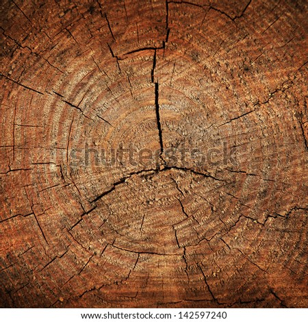 Dark brown tree trunk texture or background - stock photo