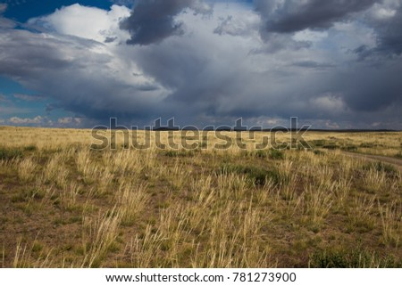Dark clouds over Mongolian steppe