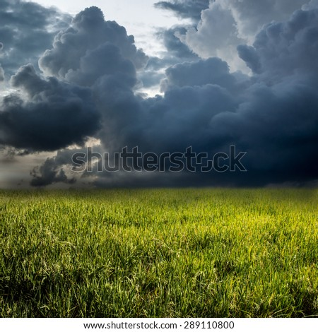 DARK FILTER CLOUD AND GREEN GRASS - stock photo