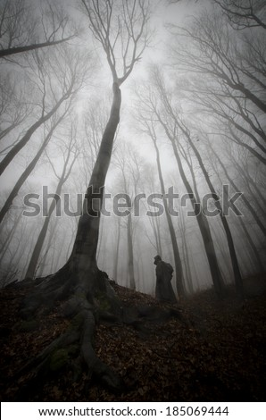 dark forest with scary man and huge old tree with twisted roots - stock photo