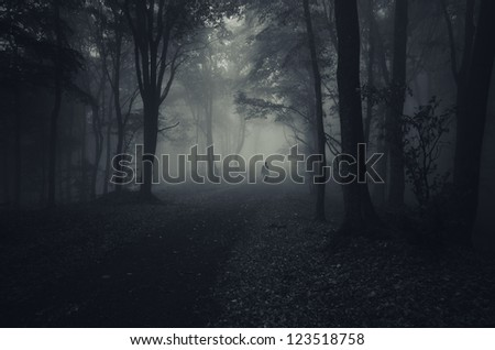 dark forest with spooky man walking on a path - stock photo
