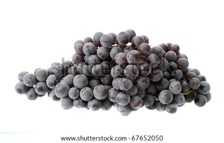 Dark grapes on a white background are isolated. - stock photo