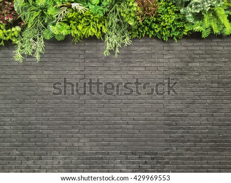 Dark grey/black brick wall with plant decoration on top as backdrop - landscape