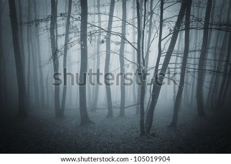 dark landscape with forest - stock photo