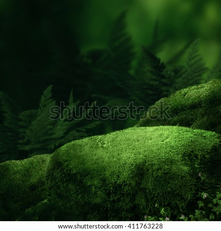 Dark magic forest with big moss stones - stock photo