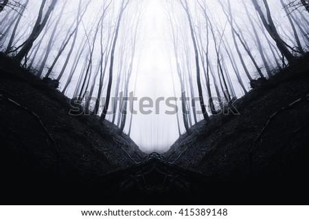 dark minimal forest landscape - stock photo
