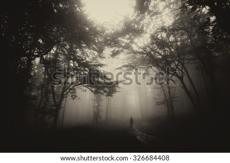 dark misty forest with man on path vintage sepia - stock photo
