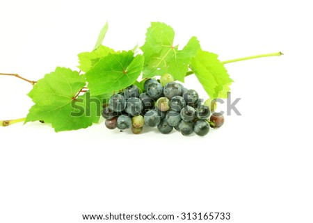 dark red wine grape bunch with leaves in white background