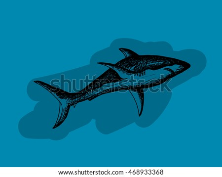 Dark shark on blue background. Free hand drawn. illustration.