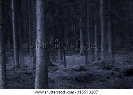 Dark spooky forest at night in shades of blue