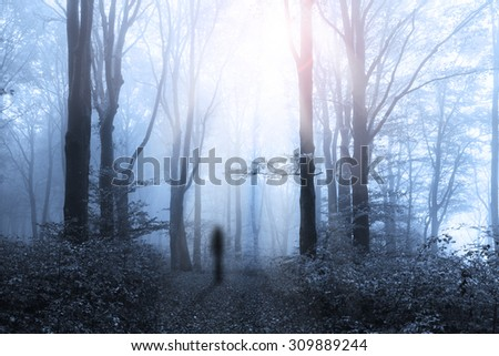 Dark trail and silhouette in horror forest - stock photo