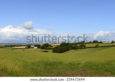 Dartmoor countryside near Bovey Tracey, Devon, landscape of the countryside near touristic village   - stock photo