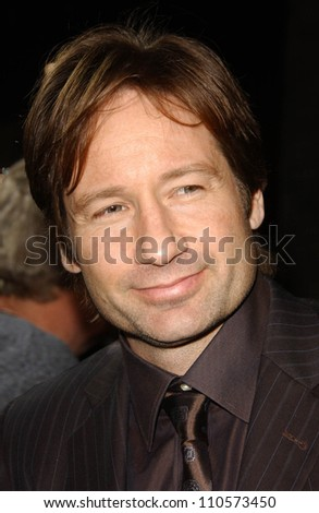 "David Duchovny at the Los Angeles Premiere of ""Things We Lost In The Fire"". Egyptian Theatre, Hollywood, CA. 10-15-07"