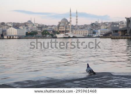 Dawn in Istanbul. View of New Mosque near Galata Bridge across Golden Horn bay, Istanbul, Turkey - stock photo