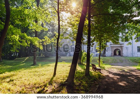 Dawn in the park - stock photo