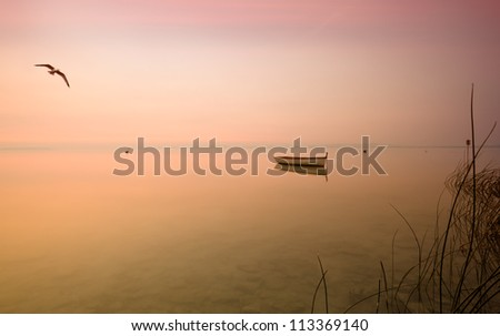 Dawn on the lake with a boat and a seagull - stock photo