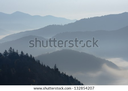 Day sunrise in the mist on the mountains of Vosges