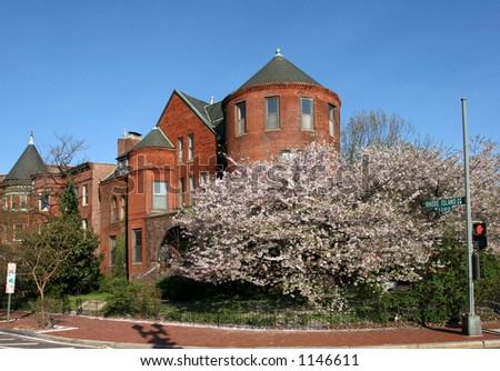DC_rowhouses with blossoms