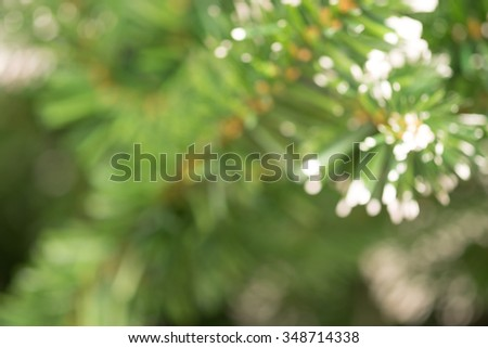 De focused or blurred artificial christmas tree for holiday season background - stock photo