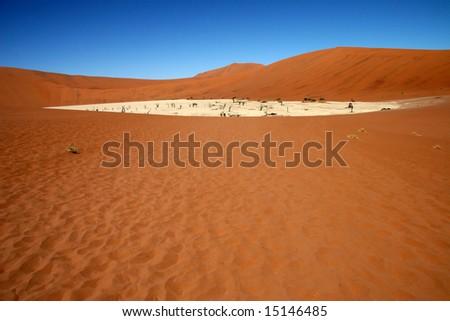 Dead acacia trees at Dead Vlei, Namib desert, Sossusvlei, Namibia - stock photo