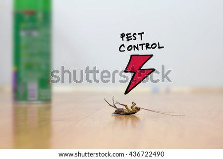 Dead cockroach on floor , drawing of pest control concept - stock photo