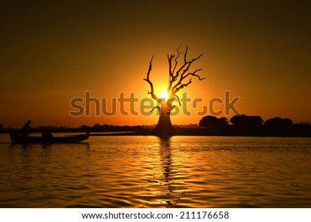 Dead tree and a boat in Mandalay lake,Myanmar. - stock photo