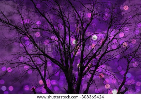 Dead tree still life bokeh background - stock photo