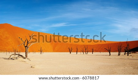 Dead trees in Dead Vlei - Sossusvlei, Namib desert, Namibia. - stock photo